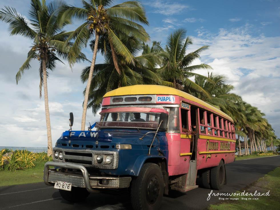 Les bus colorés pour aller à la plage