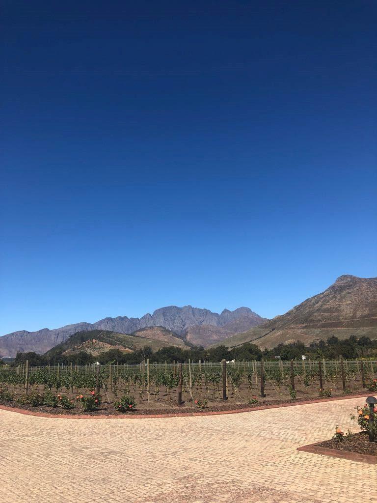 La région des vins - Cape Town