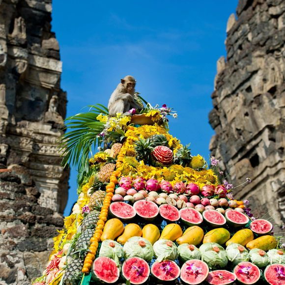Singe lors du festival en Thaïlande