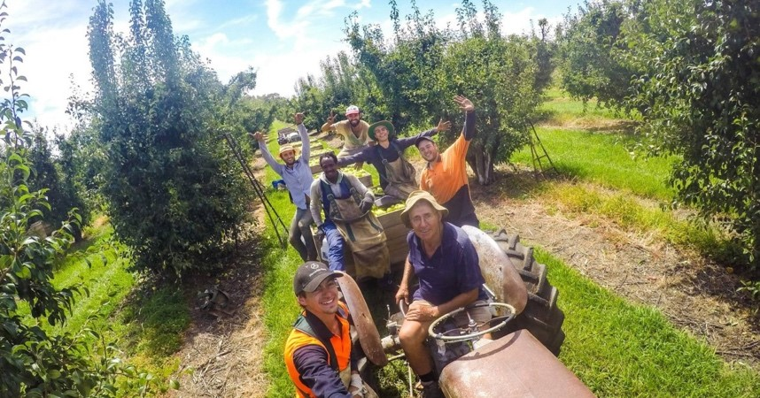 Travail dans les fermes australiennes