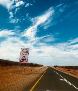 Sur les routes de Namibie