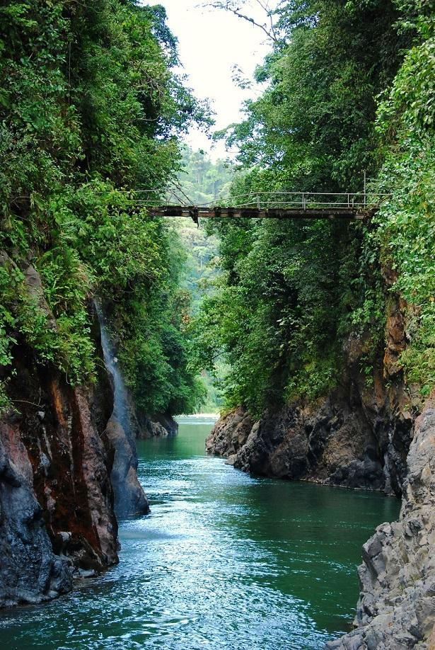 Rivière au cœur de l'un des plus beaux parcs nationaux du Costa Rica