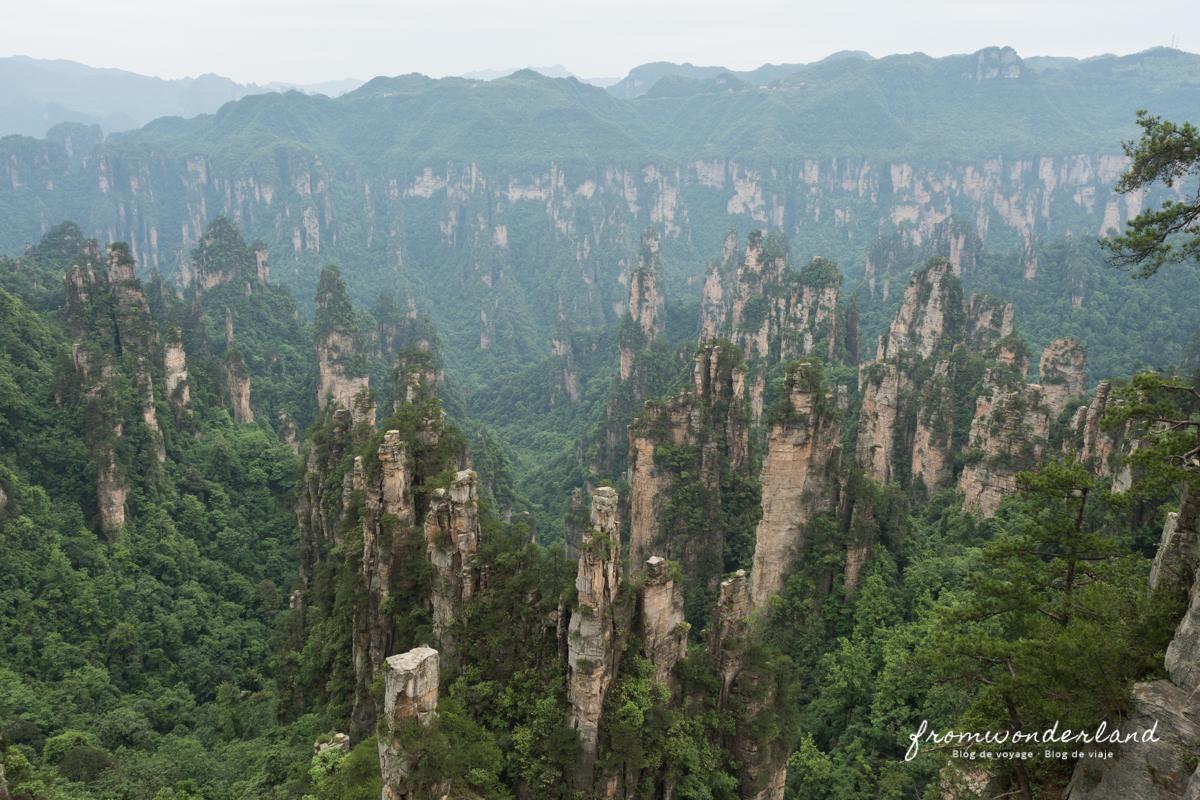 Vue sur les montagnes de Zhangjiajie