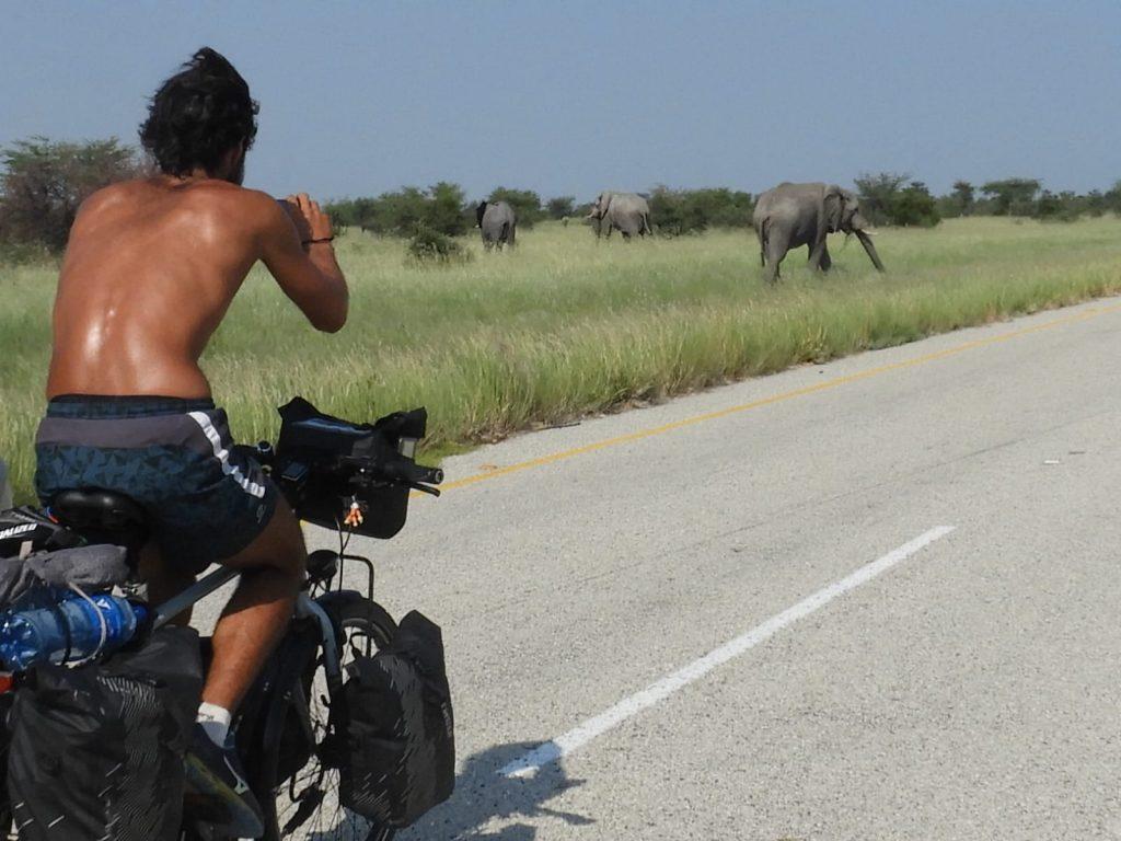 Sur la route avec les éléphants