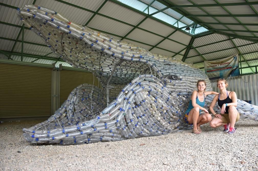 Baleine en plastique
