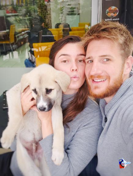 Les So'Colas avec Tavuk le chien