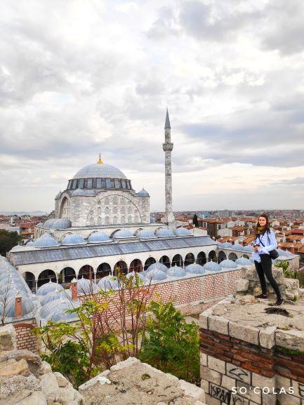 Vue sur Istanbul et la mosquée