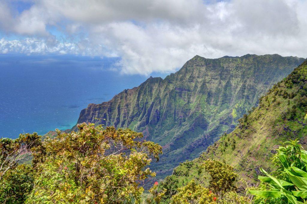 Vue d'Hawaï