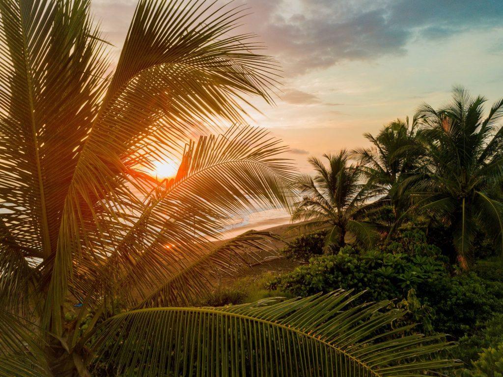 Attestation d'assurance voyage Costa Rica